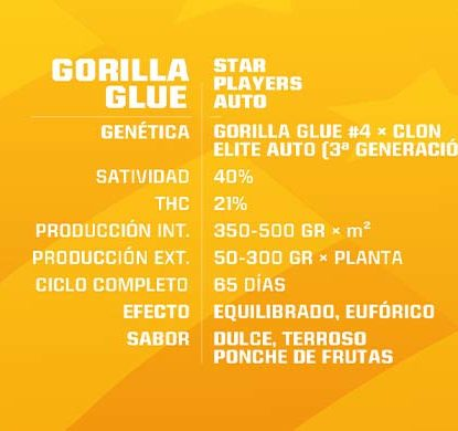 Description of Gorilla Glue auto flowers seeds