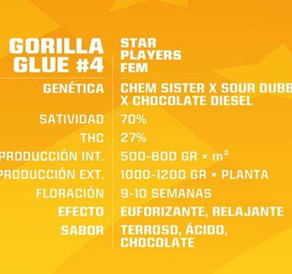 Description of Gorilla Glue feminized seeds