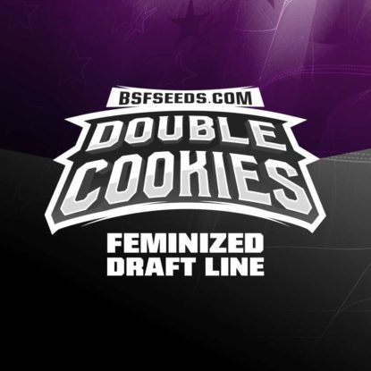Logo of Double Cookies auto flowers seeds