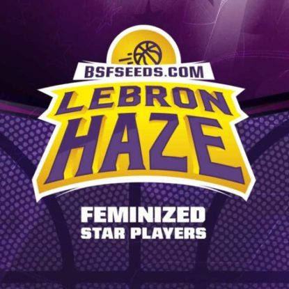 Logo of Lebron Haze feminized seeds