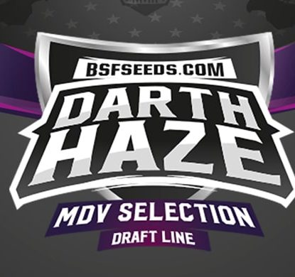 Darth Haze Sensory Seeds
