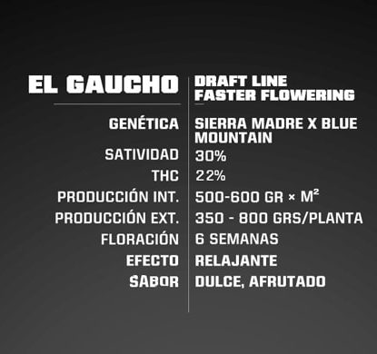El Gaucho information of fast flowering weed seeds