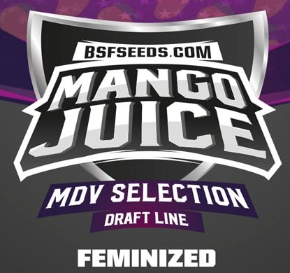 Mango Juice feminized seeds label