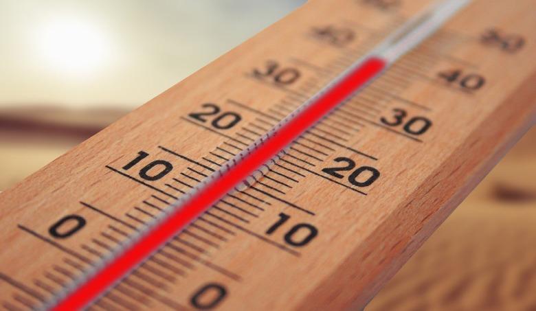 temperature changes marijuana seeds
