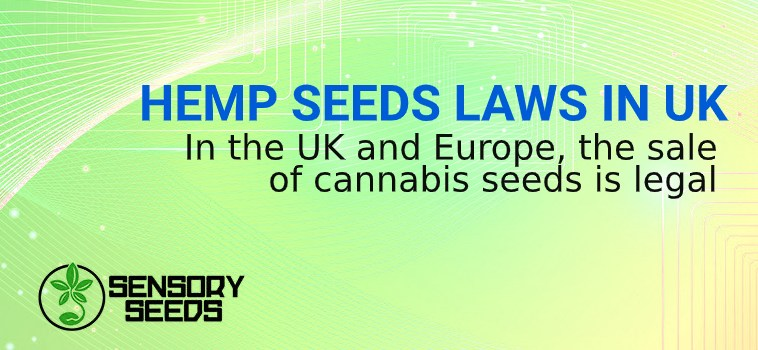 uk hemp seeds laws