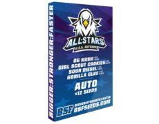 Kit of weed seeds All Stars USA Automix from SensorySeeds