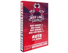 Red Line Automix marijuana seeds kit