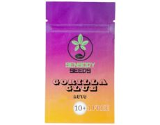 bulk-weed-seeds-gorilla-glue-4