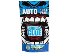 bulk weed seeds gorilla glue 4