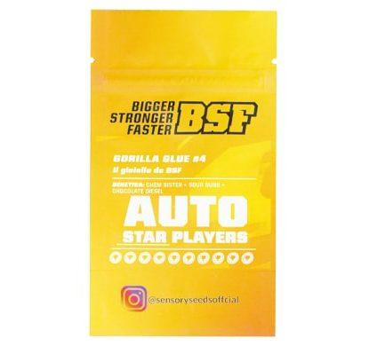 Description of Gorilla Glue 4 bulk auto flower seeds