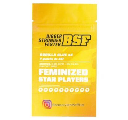 Description of Gorilla Glue 4 bulk feminized seeds