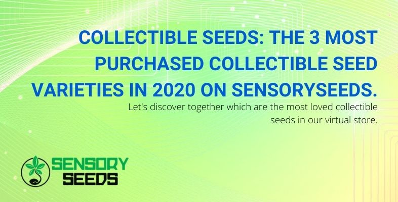 Three most purchased seed varieties in 2020 on Sensoryseeds