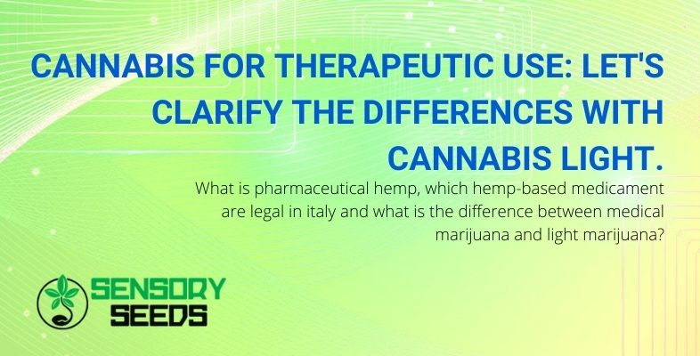 Let's see what are the differences between medical cannabis and light cannabis?