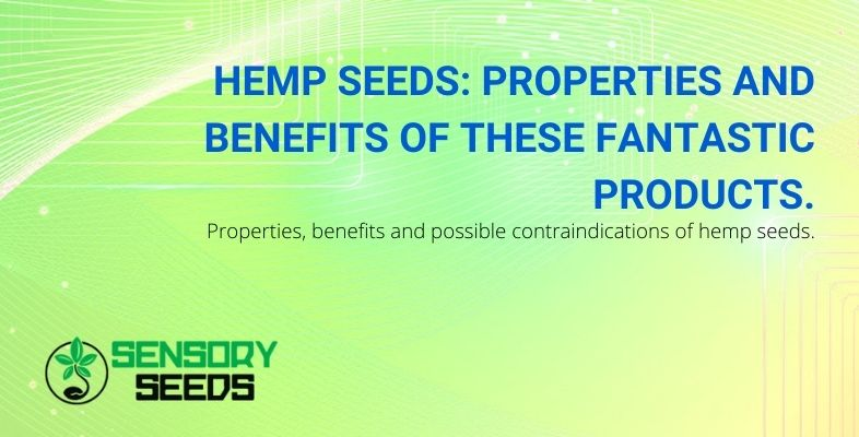The properties and benefits of the fantastic hemp seeds