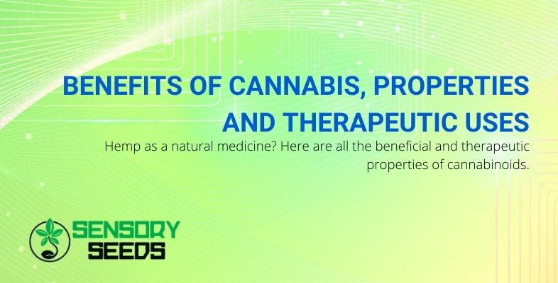 Properties, benefits and therapeutic uses of cannabis