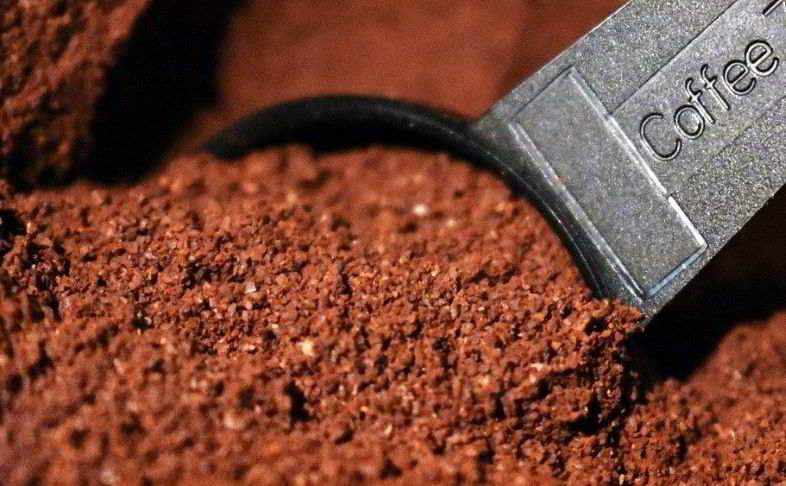 Coffee as a natural fertilizer for green plants