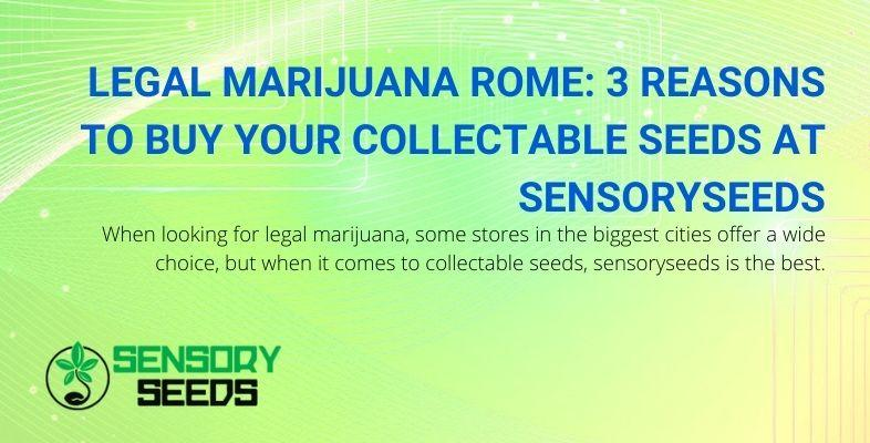 3 days to choose sensoryseeds for your collectible seeds