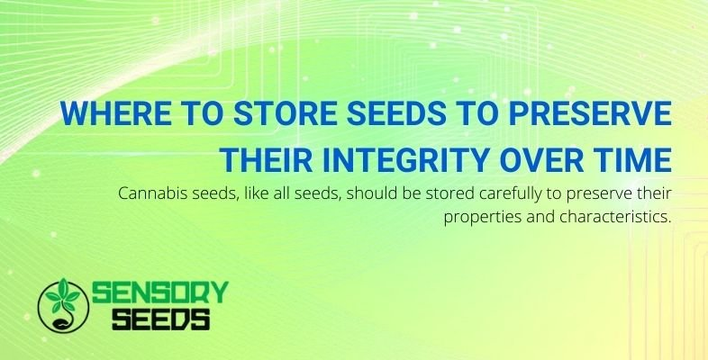 Where should cannabis seeds be stored to preserve their integrity?