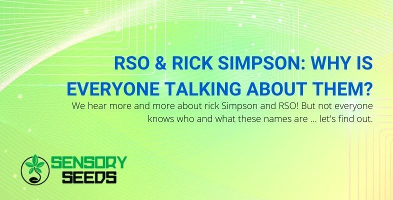 Who are RSO and Rick Simpson?